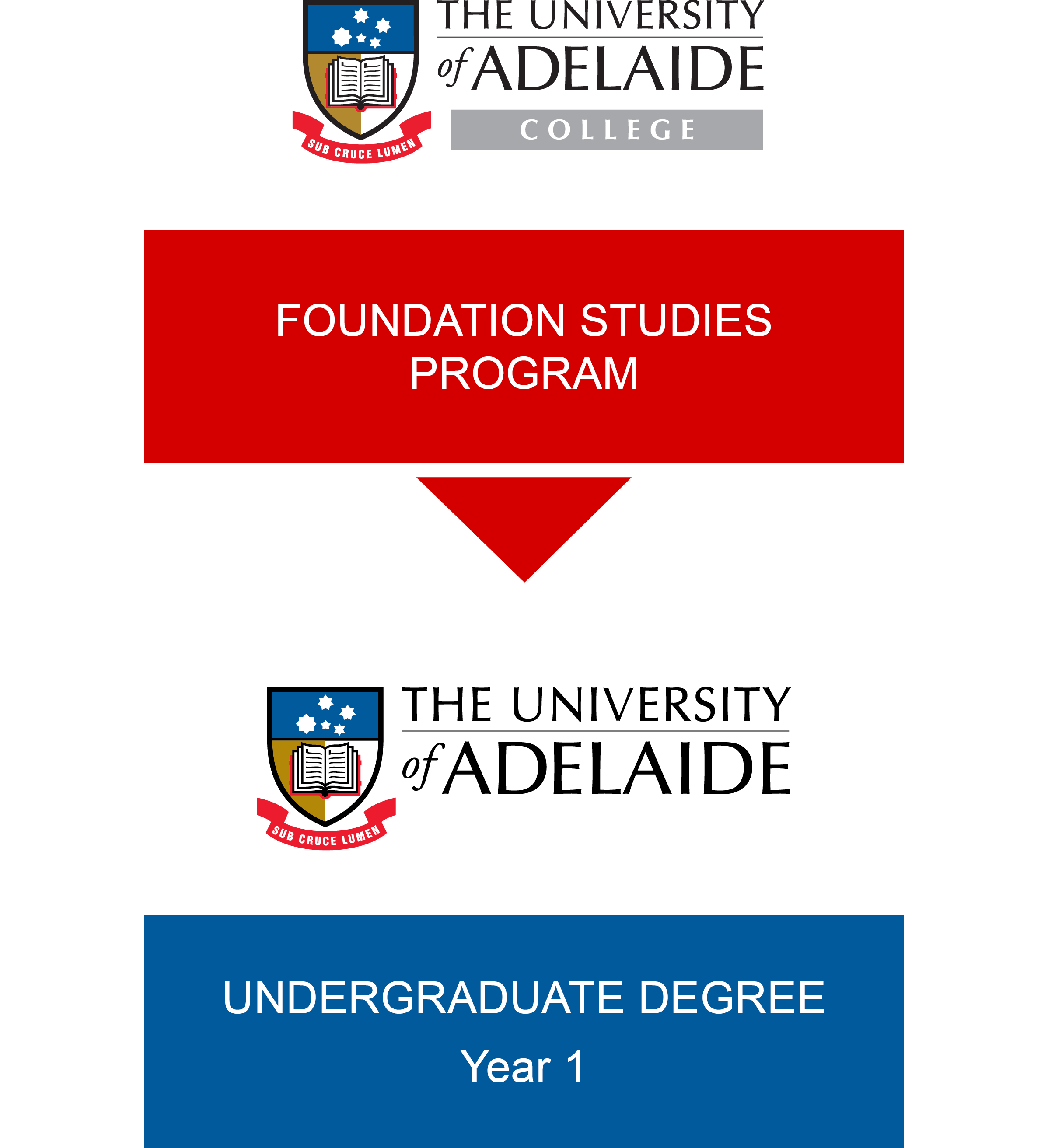 foundation studies the university of adelaide college pathway